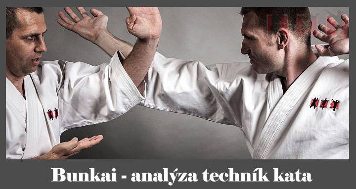 obrázok - Čo je bunkai - aplikácie karate kata.