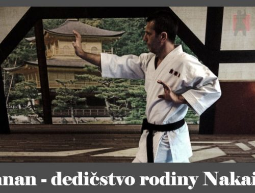 obrázok - pozícia z karate kata Annan