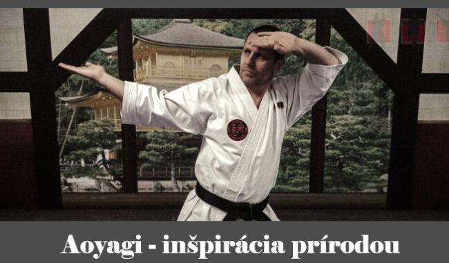 obrázok - karate kata Aoyagi